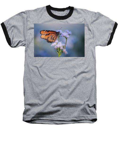8x10 Metal - Queen Butterfly Baseball T-Shirt by Tam Ryan