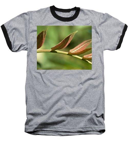 Leaf Bridge Baseball T-Shirt