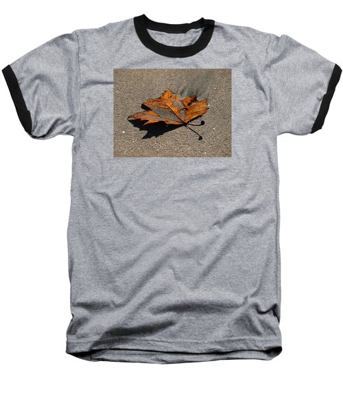 Leaf Composed Baseball T-Shirt by Joe Schofield