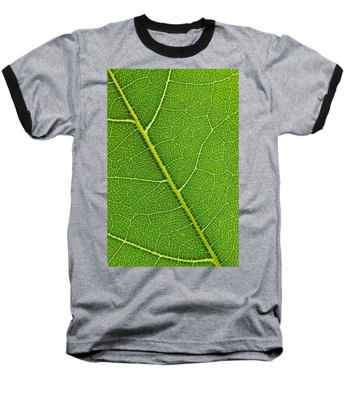 Baseball T-Shirt featuring the photograph Leaf Detail by Carsten Reisinger