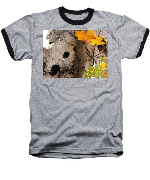 Leaning Birch Baseball T-Shirt