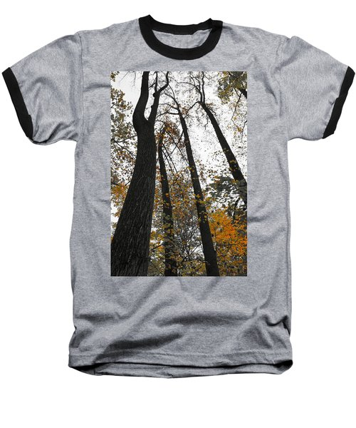 Baseball T-Shirt featuring the photograph Leaves Lost by Photographic Arts And Design Studio