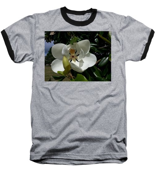 Lemon Magnolia Baseball T-Shirt