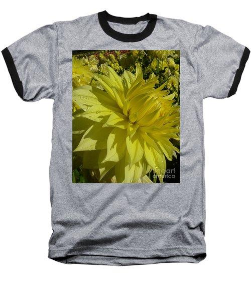 Lemon Yellow Dahlia  Baseball T-Shirt by Susan Garren
