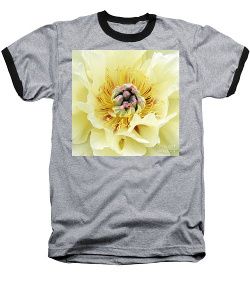 Lemonade Baseball T-Shirt by Lilliana Mendez