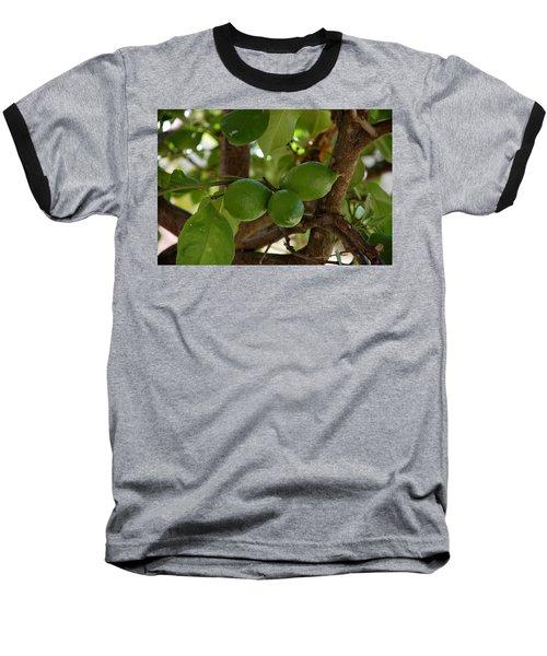 Lemons Trio Baseball T-Shirt