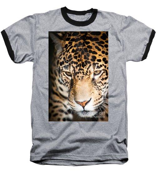 Leopard Resting Baseball T-Shirt