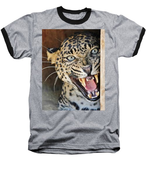 Leopard Snarling Baseball T-Shirt by Diane Alexander