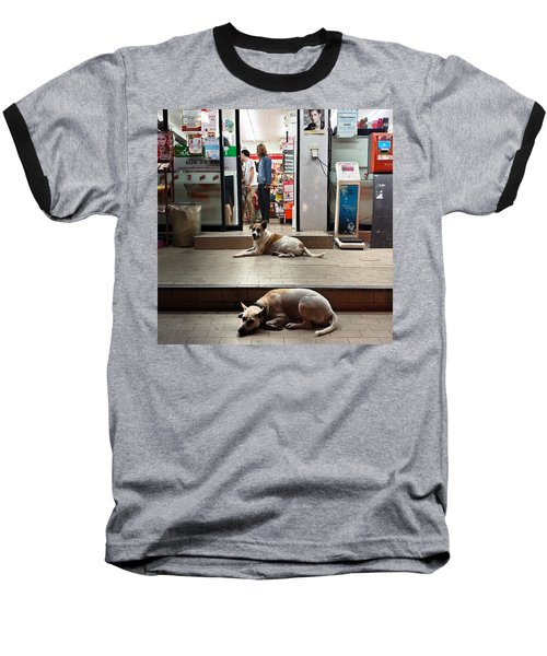 Baseball T-Shirt featuring the photograph Let Sleeping Dogs Lie Where They May by Mr Photojimsf