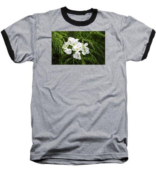 Light Of The White Baseball T-Shirt