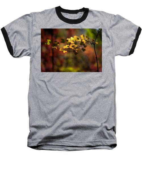 Baseball T-Shirt featuring the photograph Lightly Falling by Aaron Aldrich