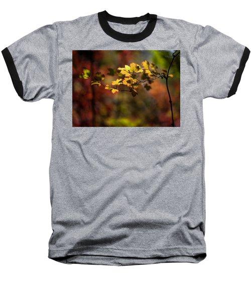 Lightly Falling Baseball T-Shirt by Aaron Aldrich