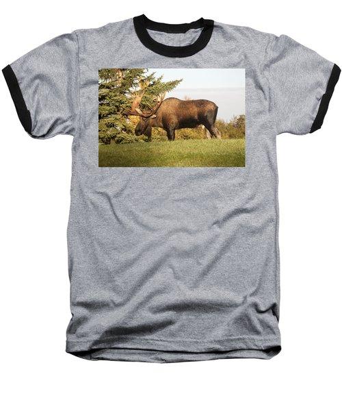 Like My Rack Baseball T-Shirt