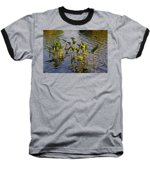 Lillies In Evening Glory Baseball T-Shirt