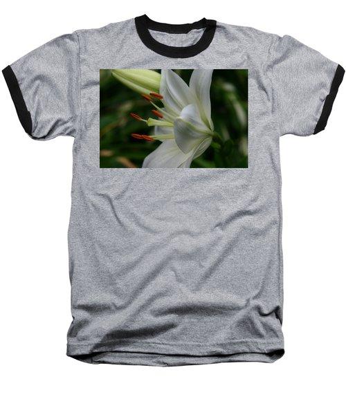 Lily Pure Baseball T-Shirt by Denyse Duhaime