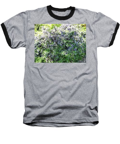 Lincoln Park In Bloom Baseball T-Shirt by David Trotter