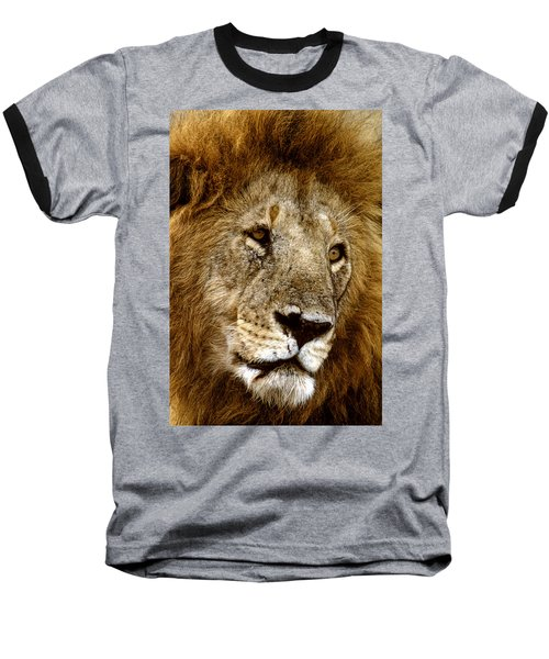 Lion 01 Baseball T-Shirt by Wally Hampton