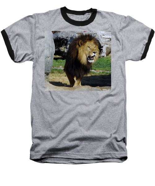 Lion 2 Baseball T-Shirt