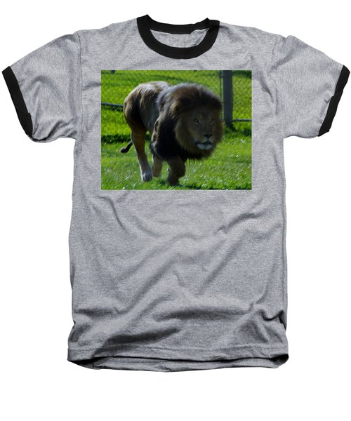 Lion 4 Baseball T-Shirt