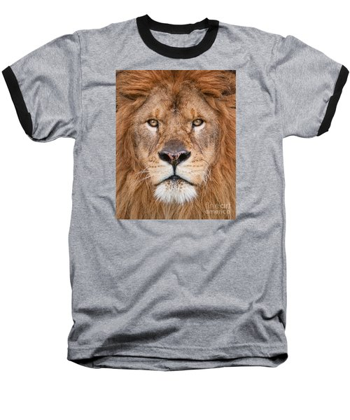 Baseball T-Shirt featuring the photograph Lion Close Up by Jerry Fornarotto