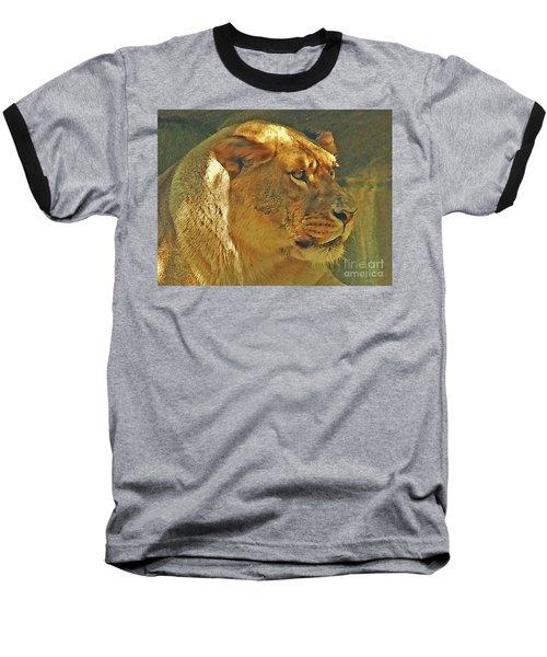 Lioness 2012 Baseball T-Shirt