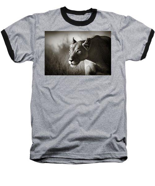 Lioness Stalking Baseball T-Shirt