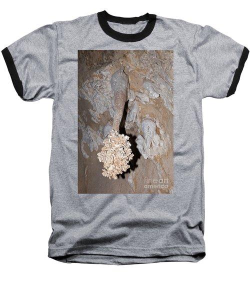 Lions Tail Carlsbad Caverns National Park Baseball T-Shirt