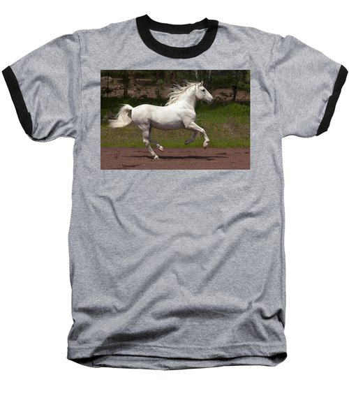 Lipizzan At Liberty Baseball T-Shirt by Wes and Dotty Weber