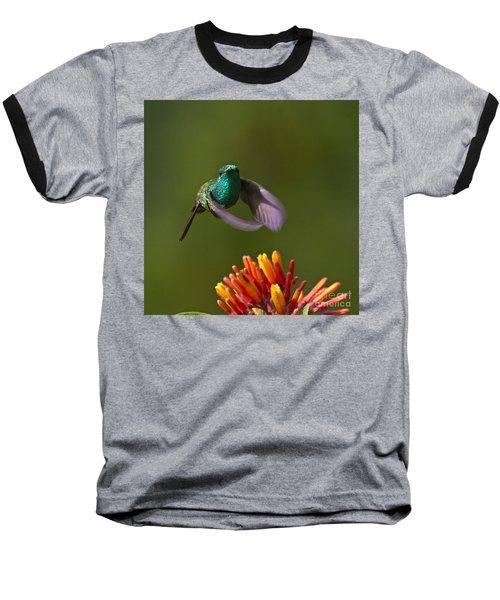 Little Hedgehopper Baseball T-Shirt by Heiko Koehrer-Wagner