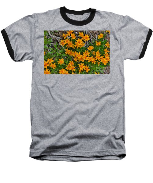 Baseball T-Shirt featuring the photograph Little Sunflower In The Mountains by Janice Rae Pariza