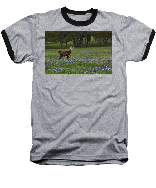Llama In Bluebonnets Baseball T-Shirt