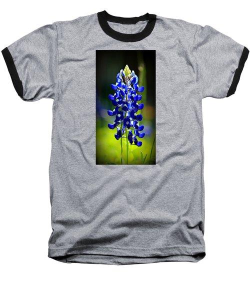 Lone Star Bluebonnet Baseball T-Shirt by Stephen Stookey