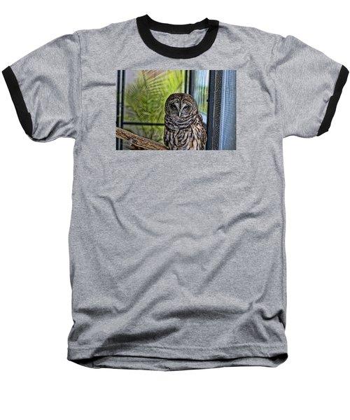 Lonely Owl Baseball T-Shirt