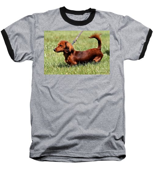 Long Haired Dachshund Baseball T-Shirt
