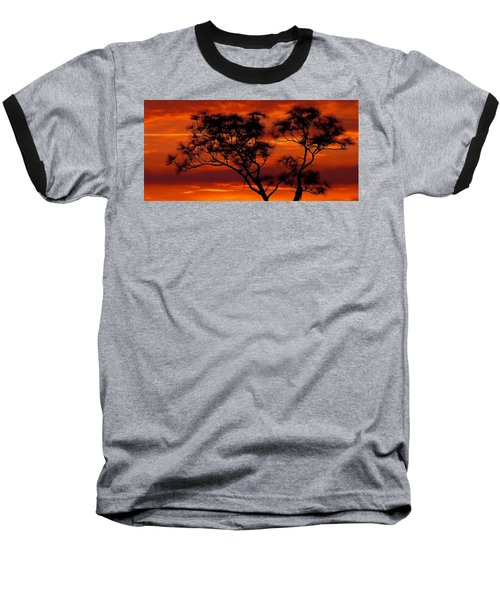 Long Leaf Pine Baseball T-Shirt