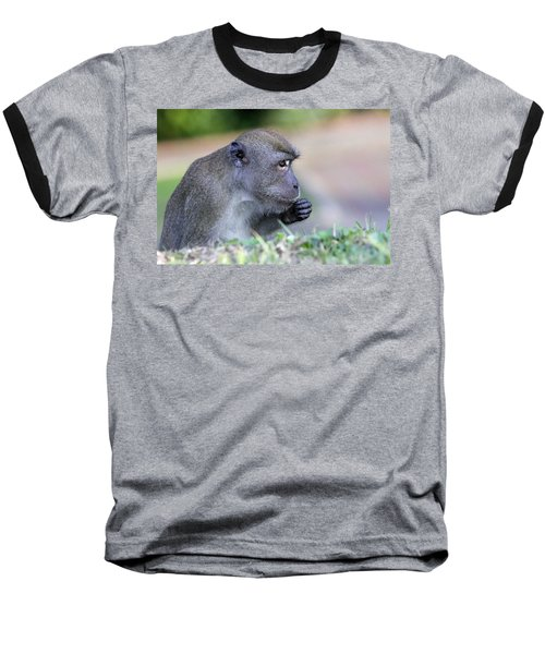 Baseball T-Shirt featuring the photograph Long Tailed Macaque Feeding by Shoal Hollingsworth