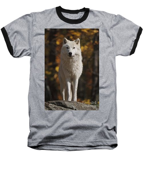Baseball T-Shirt featuring the photograph Look Out by Wolves Only