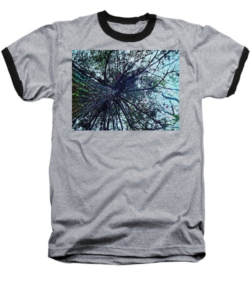 Look Up Through The Trees Baseball T-Shirt by Joy Nichols