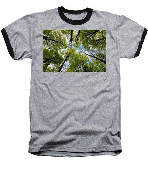 Looking Up Baseball T-Shirt by Ron Harpham