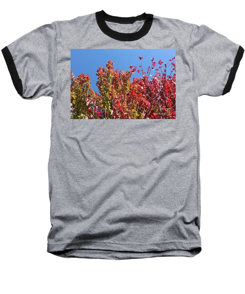Baseball T-Shirt featuring the photograph Looking Upward by Debbie Hart