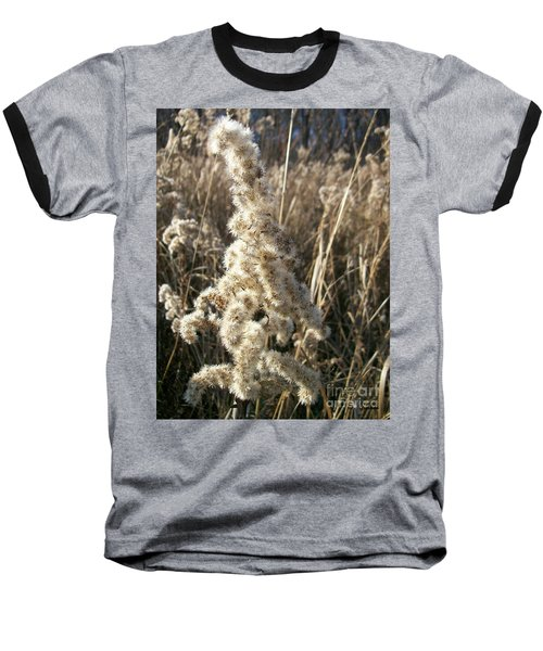 Baseball T-Shirt featuring the photograph Looks Like Cotton by Sara  Raber