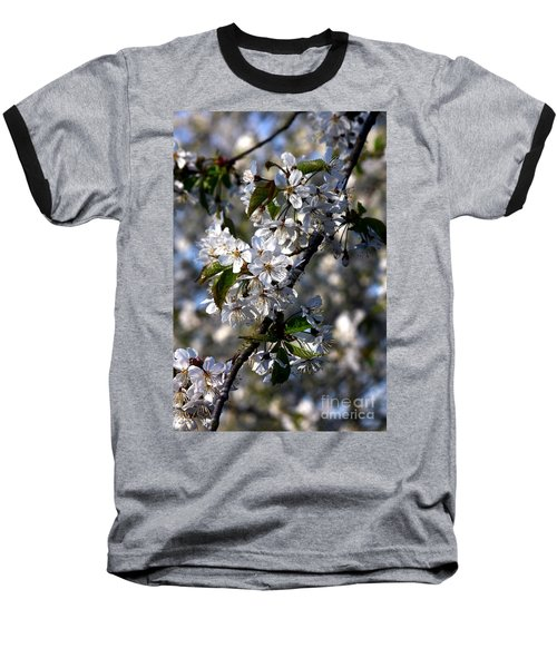 Lots Of Spring Flowers Baseball T-Shirt