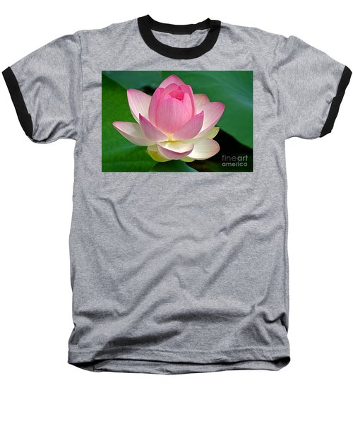 Lotus 7152010 Baseball T-Shirt