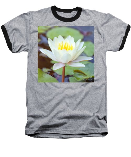 Lotus Flower 02 Baseball T-Shirt