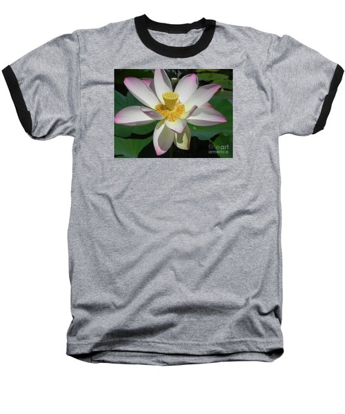Baseball T-Shirt featuring the photograph Lotus Flower by Chrisann Ellis