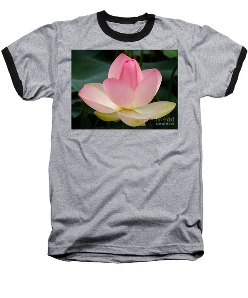 Lotus In Bloom Baseball T-Shirt