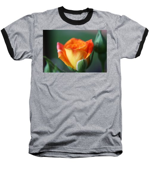 Baseball T-Shirt featuring the photograph Louisiana Orange Rose by Ester  Rogers