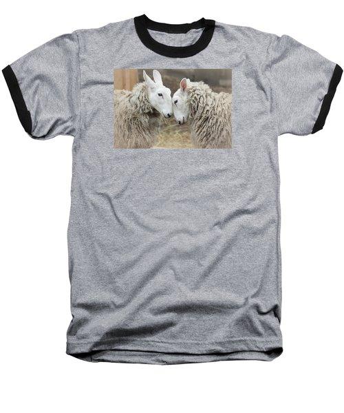 Love Me Sweet Baseball T-Shirt by The Art Of Marilyn Ridoutt-Greene