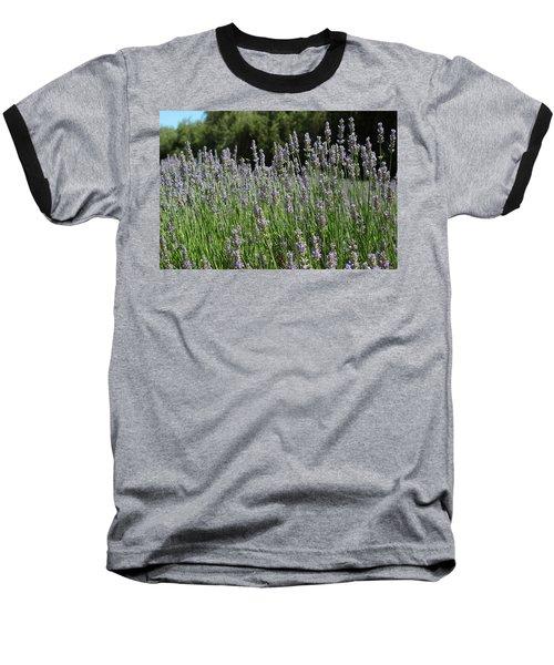Lovely Lavender Baseball T-Shirt