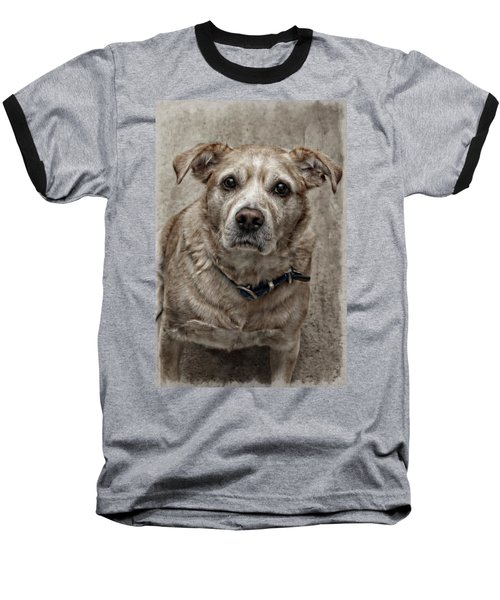 Baseball T-Shirt featuring the photograph Loyalty  by Aaron Berg